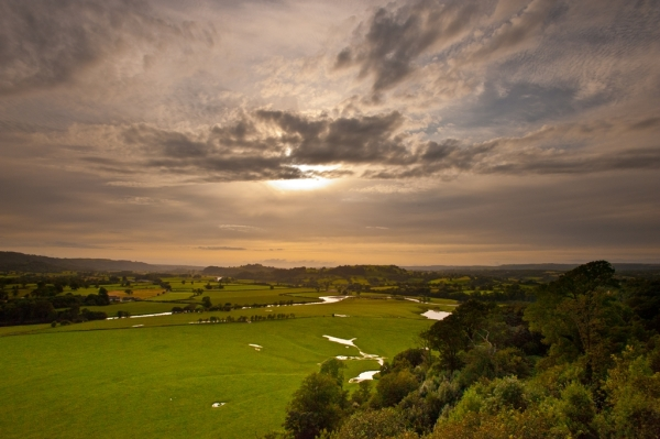Flood plain at Dinefwr  Photo: Mike Alexander