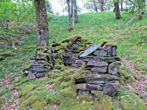 Coed Crafnant archaeology